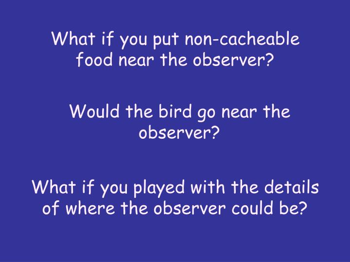 What if you put non-cacheable food near the observer?