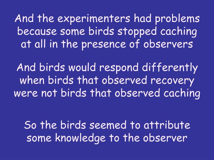 And the experimenters had problems because some birds stopped caching at all in the presence of observers