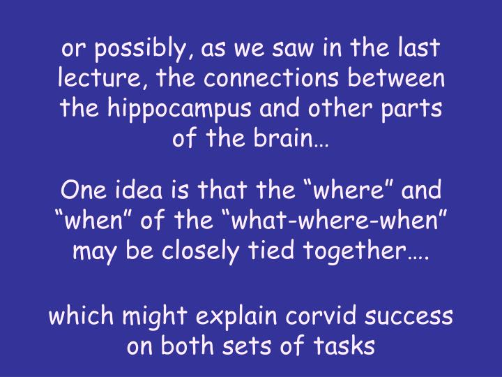 or possibly, as we saw in the last lecture, the connections between the hippocampus and other parts of the brain…