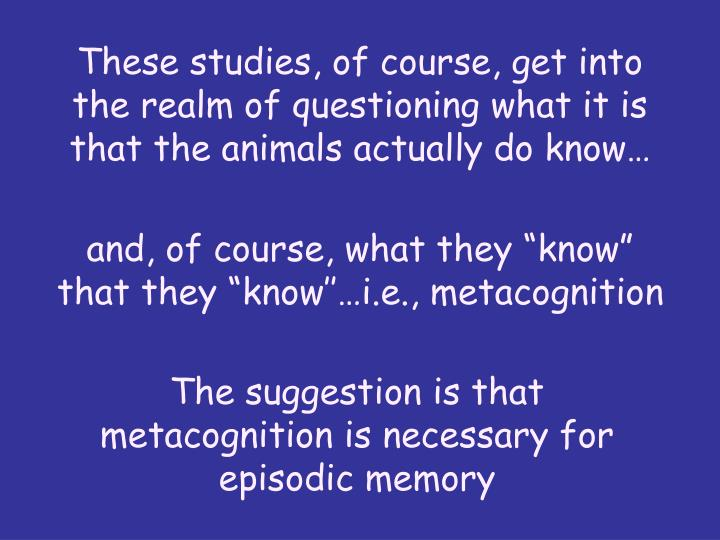 These studies, of course, get into the realm of questioning what it is that the animals actually do know…