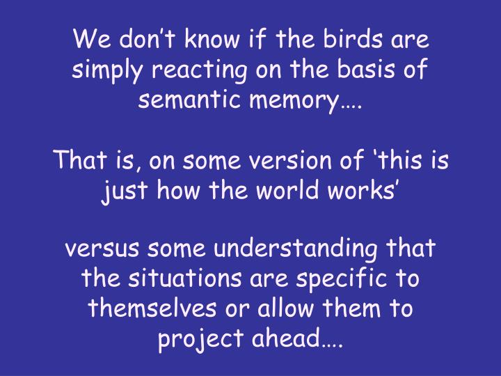 We don't know if the birds are simply reacting on the basis of semantic memory….