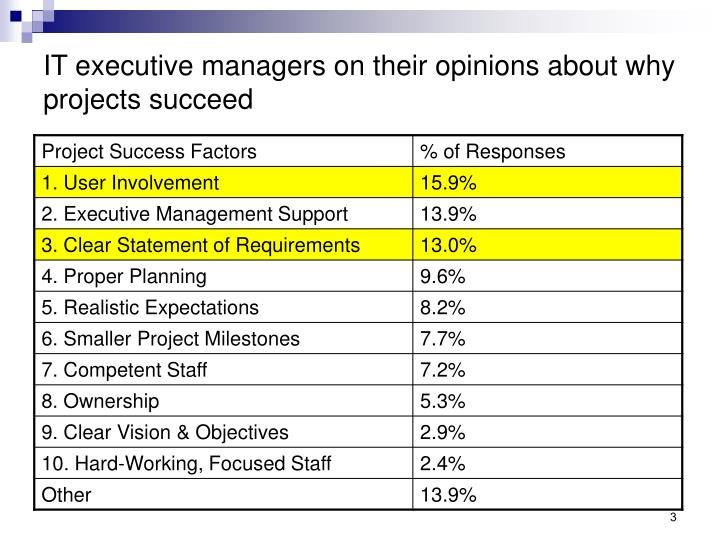 IT executive managers on their opinions about why projects succeed