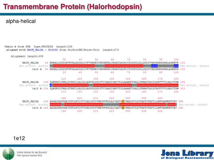 Transmembrane Protein (