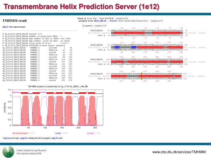 Transmembrane Helix