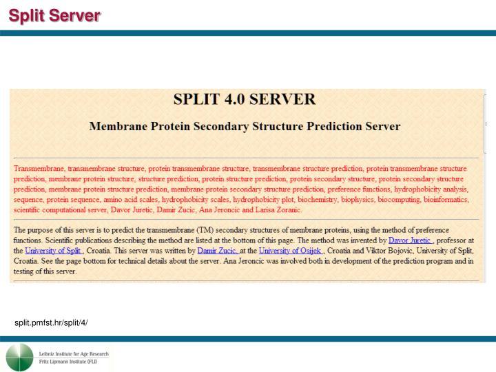 Split Server