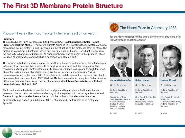 The First 3D Membrane Protein