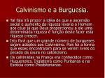 calvinismo e a burguesia