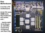 raw motherboard