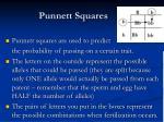 punnett squares