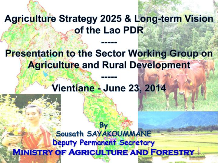 Agriculture Strategy 2025 & Long-term Vision of the Lao PDR