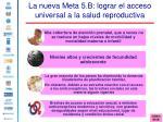 la nueva meta 5 b lograr el acceso universal a la salud reproductiva