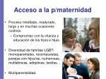 acceso a la p maternidad3