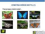 symetria w r d motyli 1