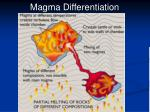 magma differentiation