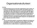 organisationskulturteori1