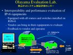 olayama evaluation lab ipv6