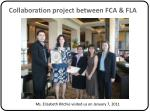 collaboration project between fca fla