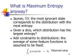 what is maximum entropy anyway1