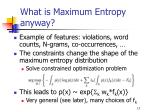 what is maximum entropy anyway2