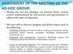 assessment of the meeting of the ad hoc group