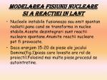 modelarea fisiunii nucleare si a reactiei in lant