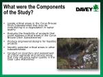 what were the components of the study