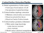 cortical surface extraction pipeline