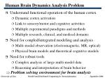 human brain dynamics analysis problem