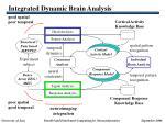 integrated dynamic brain analysis