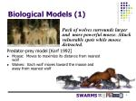 biological models 1