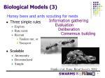 biological models 3
