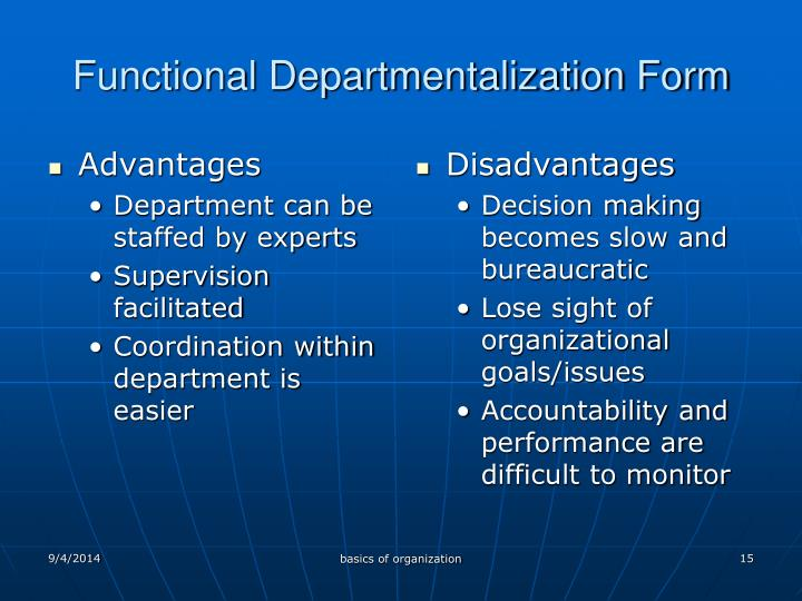 Functional Departmentalization Form