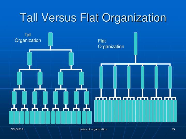 Tall Versus Flat Organization