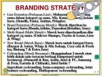 branding strategy3