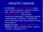 principi cardine