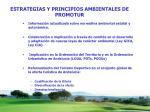estrategias y principios ambientales de promotur