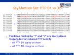 key mutation site ptp d1 vs d2