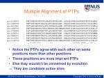 multiple alignment of ptps