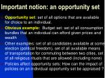 important notion an opportunity set