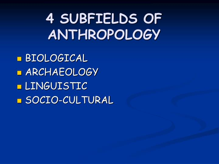 4 subfields of anthropology n.