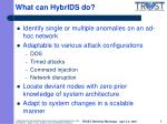 what can hybrids do