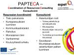 papte c a c oordination of resources c onsulting konsultointi