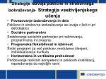 strategije razvoja poklicne in strokovnega izobra evanja strategija vse ivljenjskega u enja
