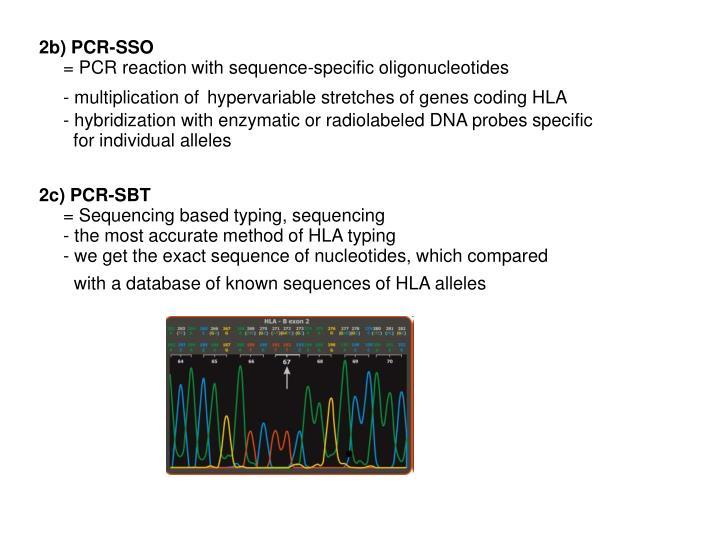 2b) PCR-SSO