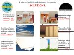 redstone mold remediation and prevention solutions