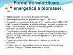 forme de valorificare energetic a biomasei