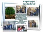 recycle paper save the forest
