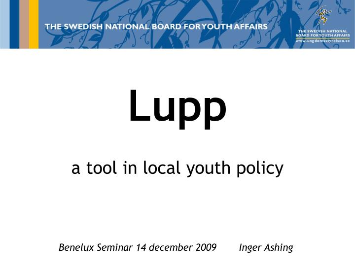 lupp a tool in local youth policy n.