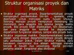 struktur organisasi proyek dan matriks