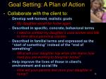 goal setting a plan of action